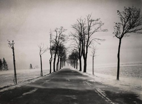 """""""  Albert Renger-Patzsch Snow Storm on Country Road, 1936. """""""