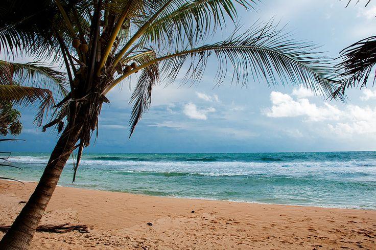 Nice view over the beach – MrJane