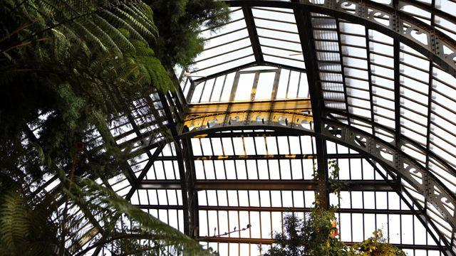 La serre de l'Histoire des plantes  Jardin des Plantes, Rive Gauche - Paris