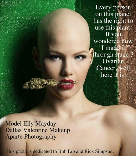 Sending Love and Healing to Elly Mayday: World renowned model posted this photo dedication to Bob Erb and Rick Simpson about her battle with Stage 3 Ovarian Cancer. Cannabis saves lives. #RSO