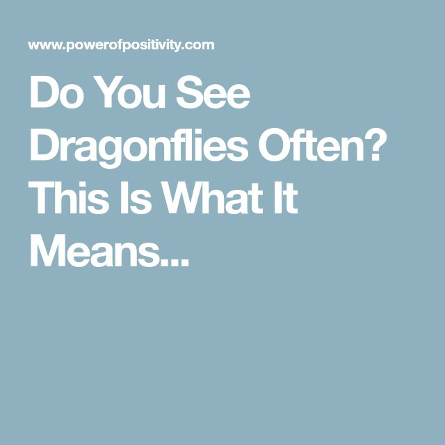 Do You See Dragonflies Often? This Is What It Means...