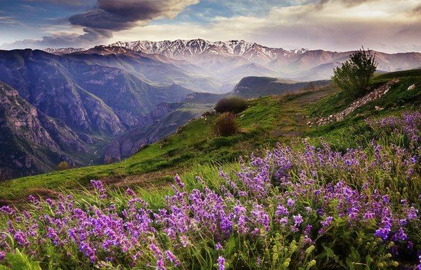Canyon of Tatev, Armenia.