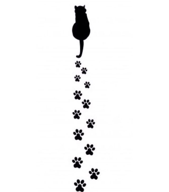 Car Decals Cat Footprints