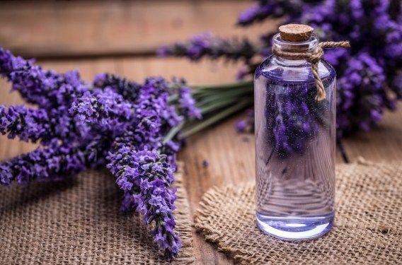 Pin On Boils Lavender