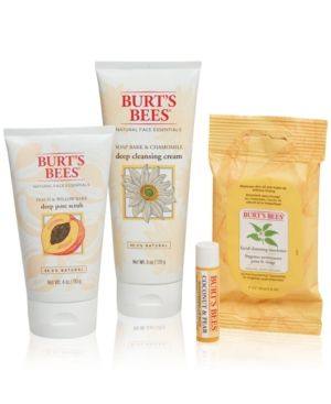 Burt's Bees 4-Pc. Face Essentials Holiday Gift Set