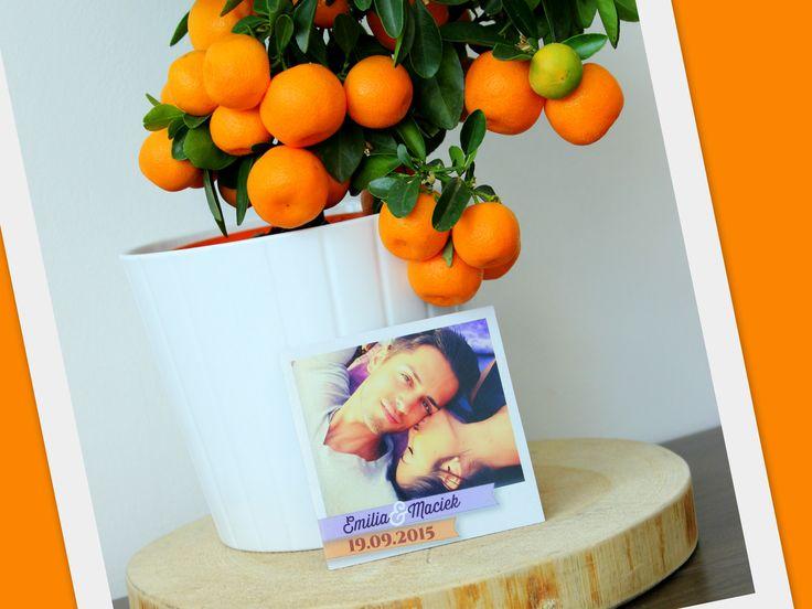Dostaliśmy pod opiekę drzewko pomarańczy. Podczas gdy właściciel drzewka odpoczywa drzewko pracuje i dzielnie pozuje do naszych zdjęć!