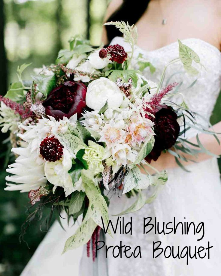 15 Protea Wedding Bouquets and Arrangements   Martha Stewart Weddings - Floral designer Sullivan Owen designed a wild bouquet of blushing bride protea, scabiosa, astilbe, king protea, peonies, sarracenia pitcher plant, and assorted greenery.