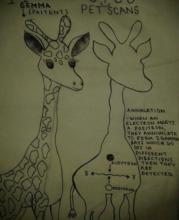 ~PET Scans Poster