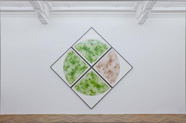 'Fission' by Markus Hoffman http://www.celesteprize.com/artwork/ido:390462/ … #photography #analogue #minimal Celeste Prize 2016
