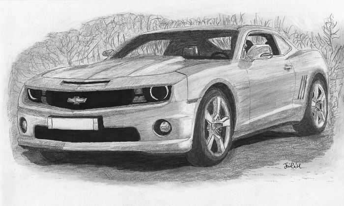 Chevrolet Camaro Sport Car By Kokas Art Camaro Chevrolet