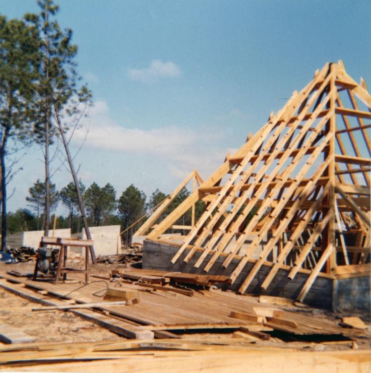 building a triangular home