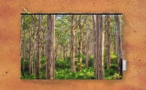 Forest Twilight, Boranup Forest Carry-All Pouch design by Dave Catley featuring…