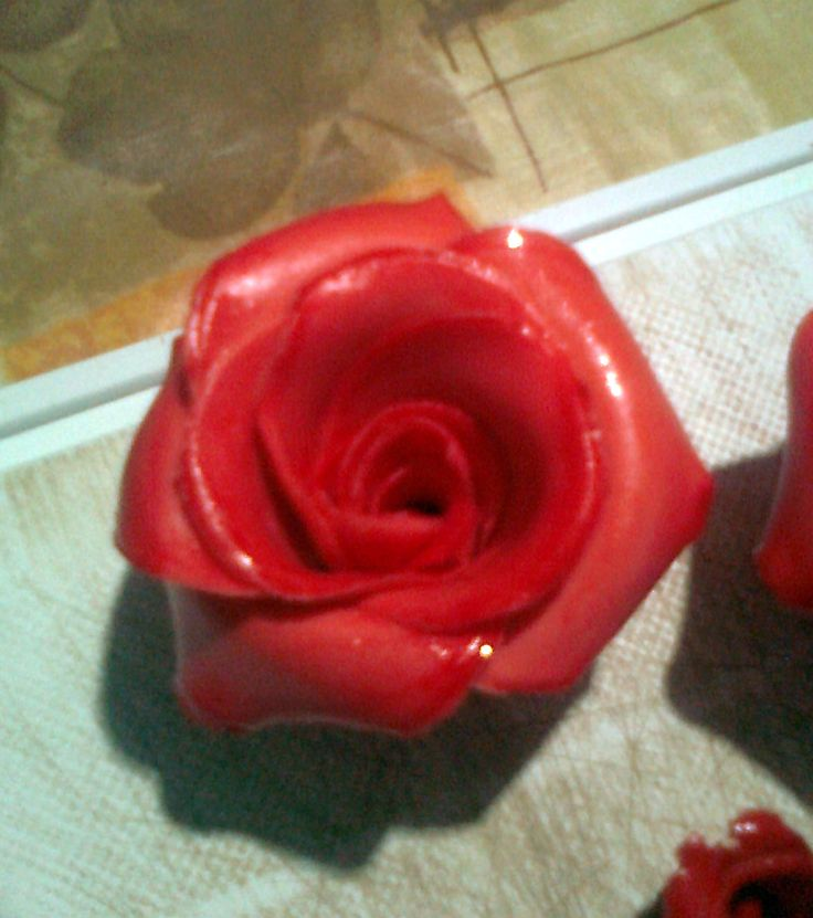 Rosa in pdz