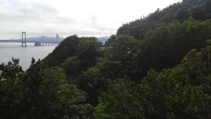 Dalian view!