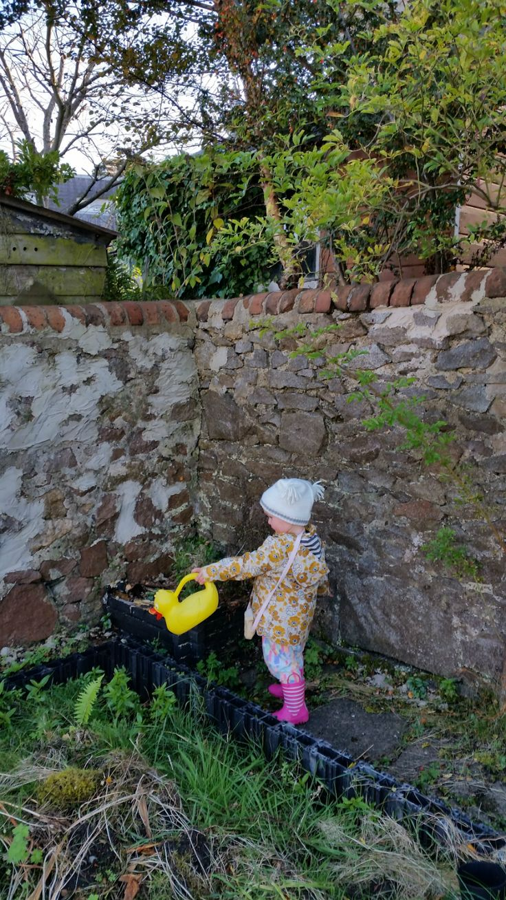 Sarah Rooftops: The Rooftops Family Garden in Autumn