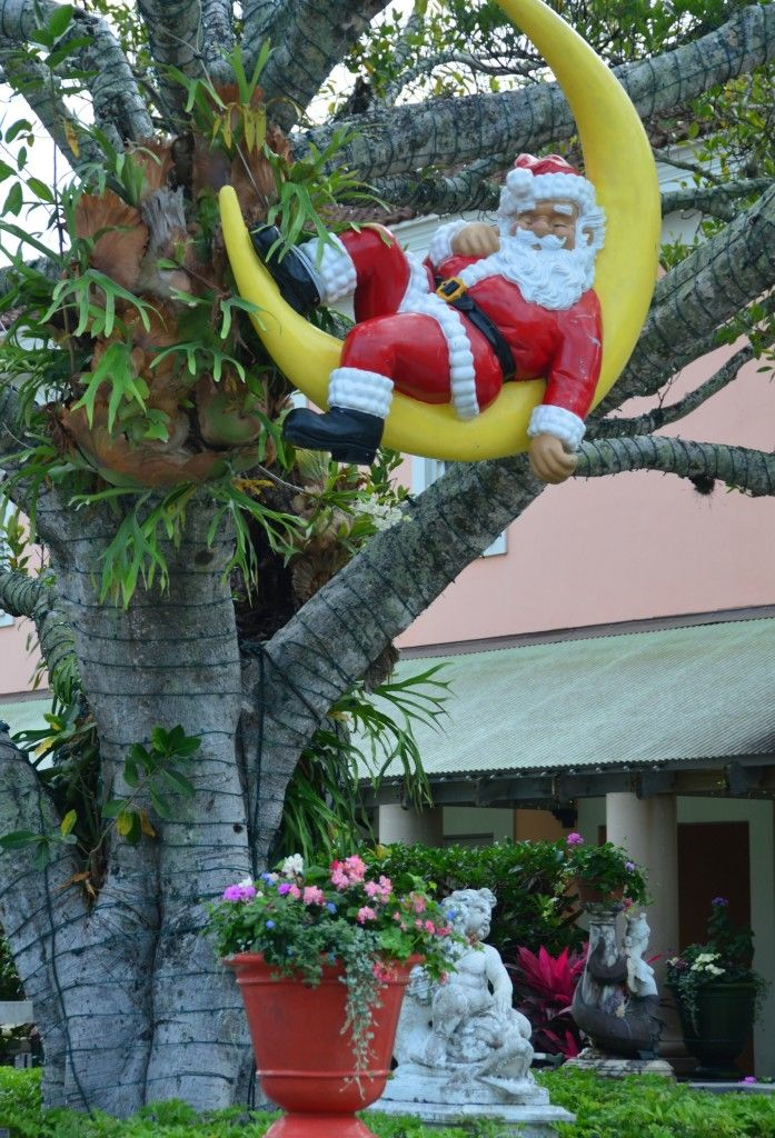 Downtown Naples christmas decorations