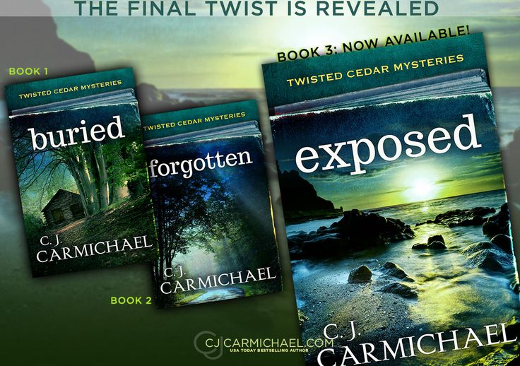 The final twist is revealed on February 25, 2016! http://cjcarmichael.com/books/exposed.php