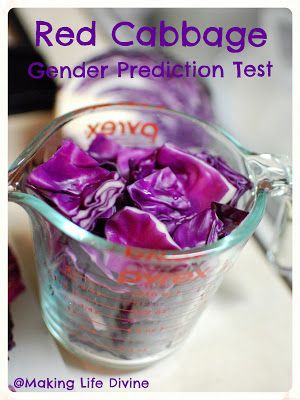 So This is Love: Making Life Divine: The Red Cabbage Gender Prediction Test
