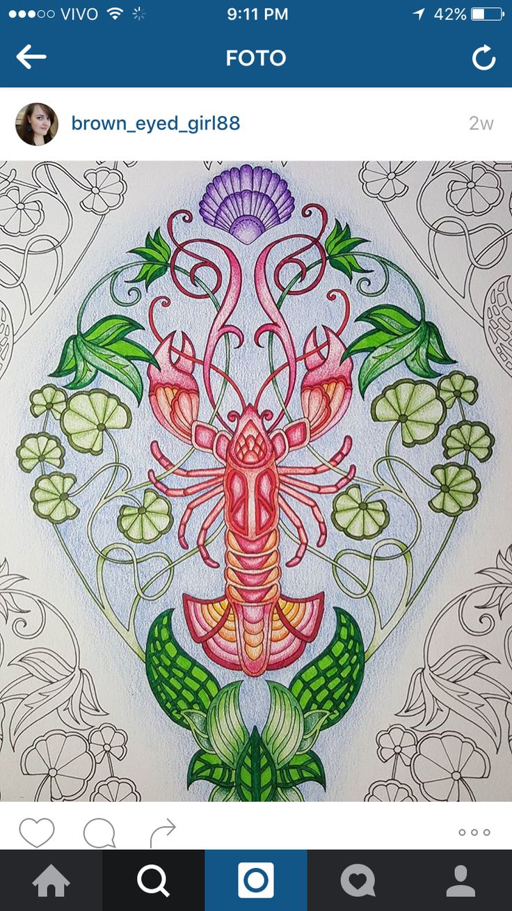 The wallpaper coloring book - 17 Best Images About Lost Ocean Page 11 Lobster Wallpaper On Pinterest Watercolors Adult Coloring And Lost