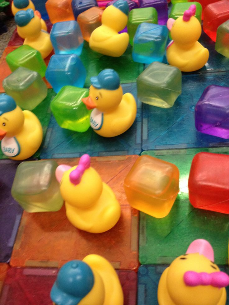 """Part of """"Duck Land"""" in the block area :-)"""