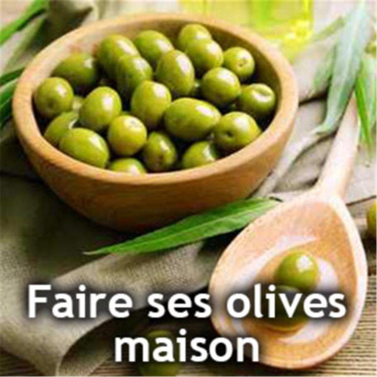 Olives maison : comment ôter l'amertume des olives vertes pour en faire de bonnes olives de table et comment les conserver en saumure...