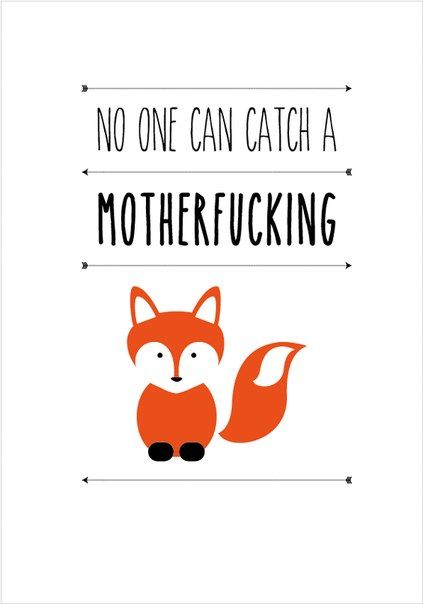 """No one can catch a motherfucking fox """"Looking For Alaska"""""""