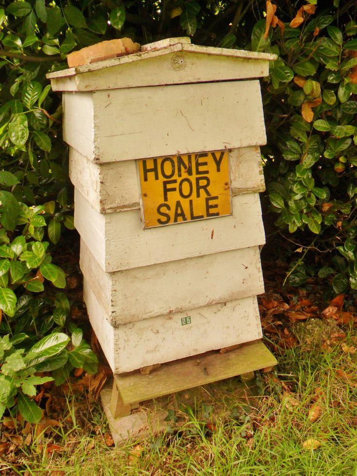 *Honey For Sale* , Wightwick Manor, Wolverhampton, England / Photography by http://vwcampervan-aldridge.tumblr.com