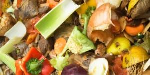 EcoScraps Loves Food Waste