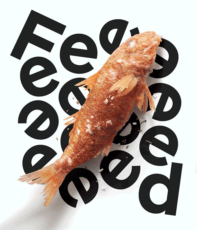 """Love this design. Click to see the whole deal.   Feed Magazine Identity   """"Feed is a seasonal food magazine. Compared to other food magazines it's very rich in content. It is a magazine that is made to Feeeeeeed you to the fullest."""""""