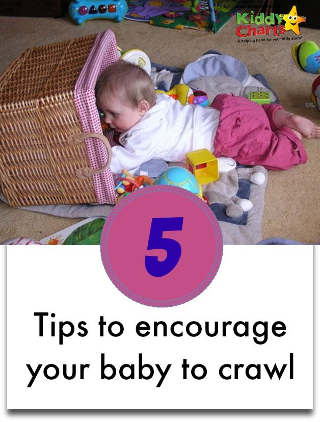 Learning to crawl – it's a massive milestone in any little baby's life, and parents strive to help their child achieve it.
