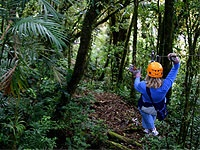 http://www.actividades-extraescolares.com/excursiones-escolares/excursiones-escolares-multiaventura-en-los-parques-de-arboles Excursiones Escolares, Multiaventura en los Parques de Árboles