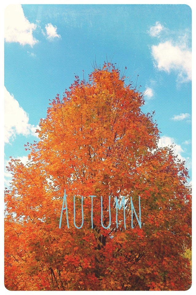Autumn iPhone wallpaper Pictures Pinterest