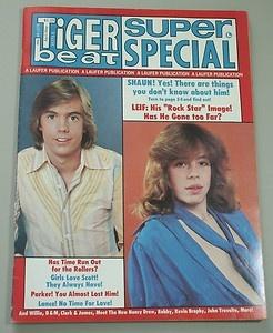 Tiger Beat Super Special #8 1978 Scott Baio, Shaun Cassidy, Lance Kerwin: Beats Teens Mag, Garrett Teens, Teens Obsession, Cassidy Teens, Teens Idol, Teens Magazines, Tigers Beats Teens, Favorite Teens, Teens Years