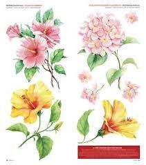 """""""tatuaggio fiori di ibisco""""的图片搜索结果"""