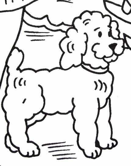 Poodle Coloring Page Apartment FurniturePoodlesColoring Pages