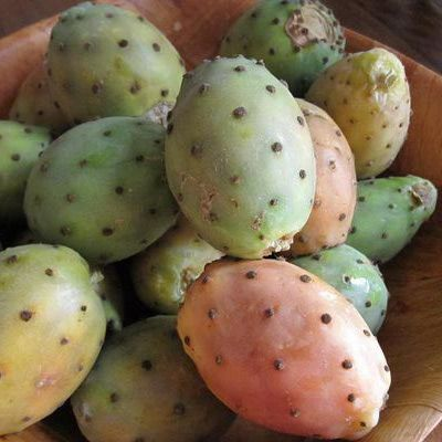 Prickly Pears (El Karmouss El Hindi)
