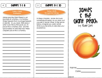 Worksheets James And The Giant Peach Worksheets 1000 images about james and the giant peach on pinterest book novel study