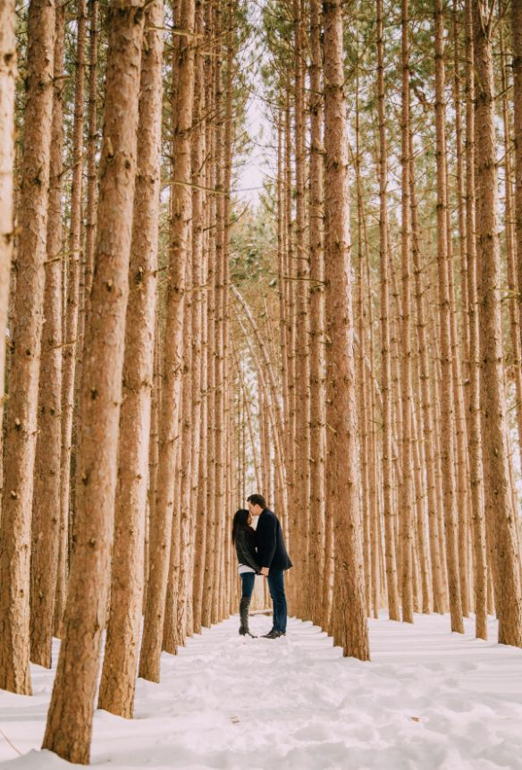 Photography by: http://shannonrobbinsphotography.com/kortright-centre-engagement/