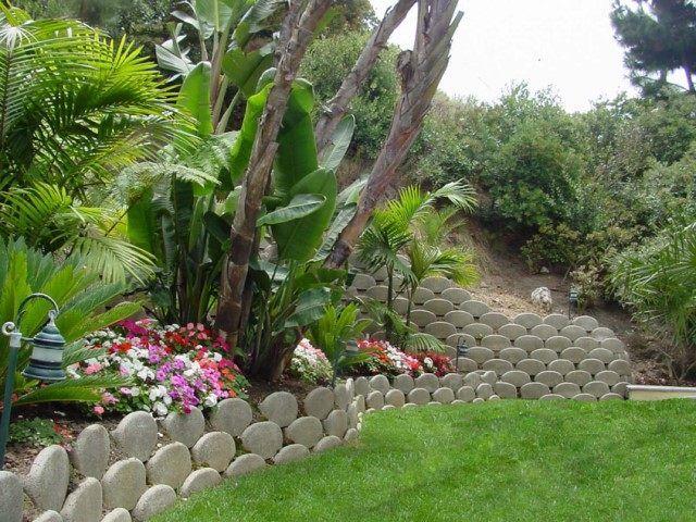 jardin en pente avec muret de soutènement et végétation abondante et exotique
