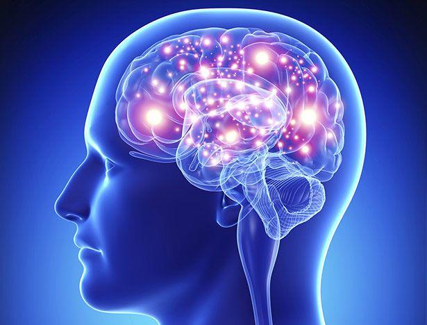 scinexx | Forscher entdecken Epilepsie-Schalter: Blockierte Signalkette lindert epileptische Krampfanfälle in Versuchstieren