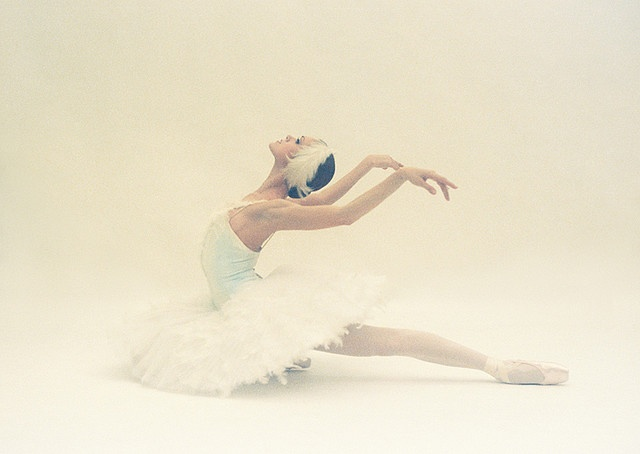 ~ The white swan in its most beautiful pose. I love her arms.