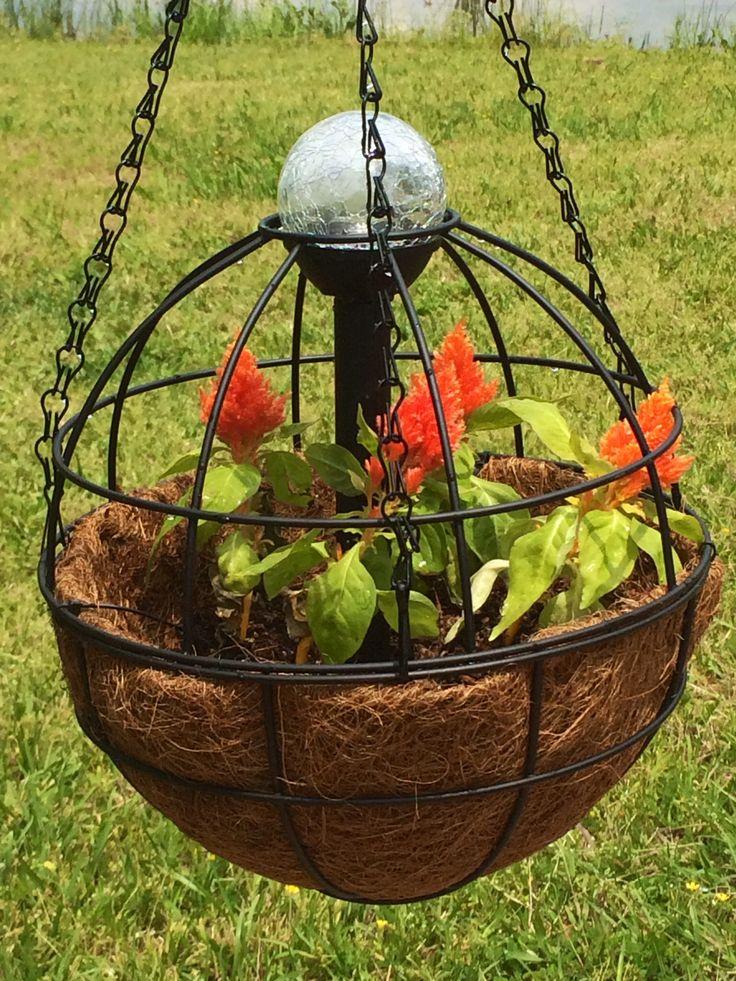 My latest project Easy planter, solar light, Shepard's hook, orange flowers