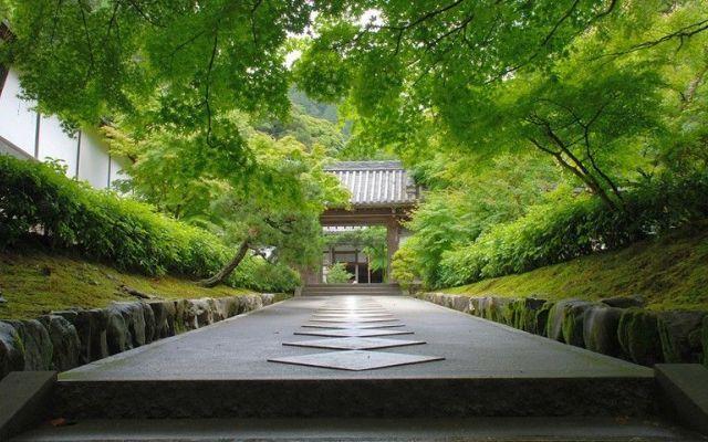 Giardini giapponesi - giardini zen I giardini giapponesi sono nati sull'isola di Honshu, la grande isola centrale del Giappone. Nel loro aspetto fisico sono stati influenzati dalle caratteristiche distintive del paesaggio Honshu; aspr #zen #giardini #acqua #piante #pietra