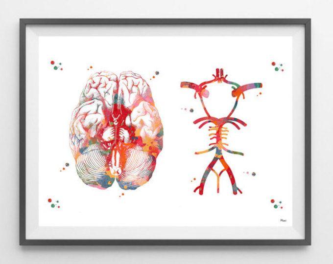 Circle Of Willis watercolor print anatomy art brain anatomy cerebral arterial circle medical art poster neurology human anatomy wall art