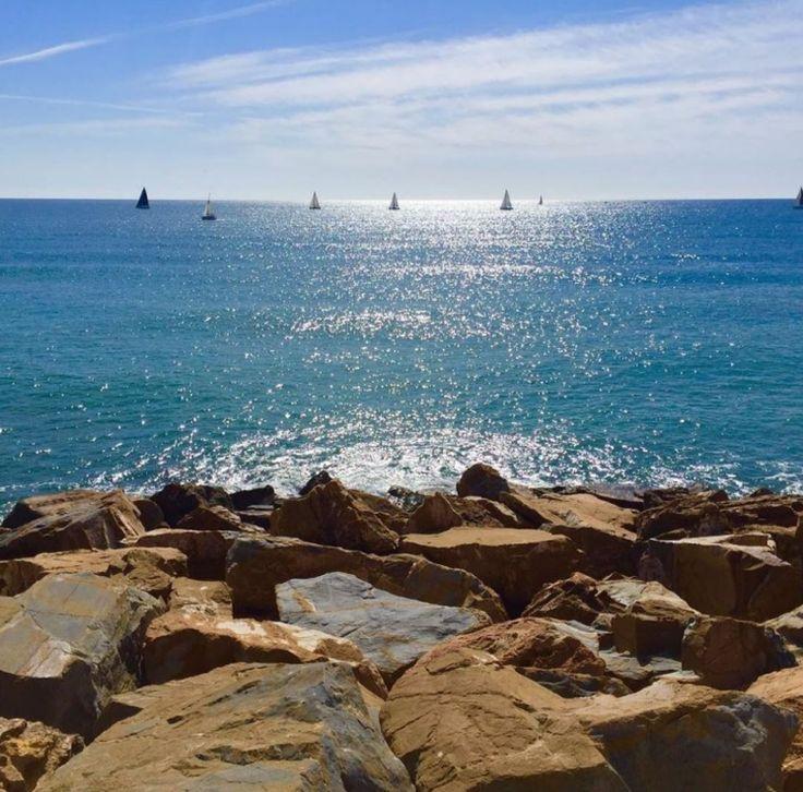 ⛵⛵ Estos veleritos salen a navegar por las aguas del la Costa Blanca en Torrevieja. . Fotito de @lenaborman en instagram . . . #MarinaSalinas #Torrevieja #PuertoTorrevieja #Playa #Beach #MarMediterraneo #MediterraneanSea #CostaBlanca #Cielo #Sky #BlueSky #Sea #BlueSea #Mar #Veleros #Sailboat #Sail #Navegar #GreatView