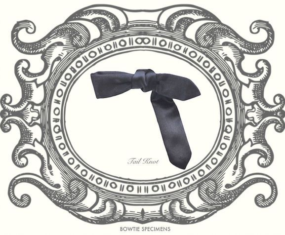 How to Tie a Bow Tie   10.Tail Knot   蝶ネクタイの結び方   尾垂れ結び
