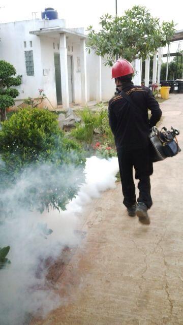 Jasa Fogging Profesional