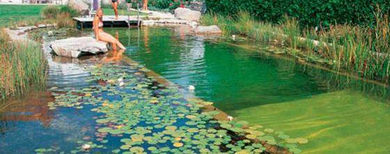 Las piscinas ecol gicas son una buena opci n para las for Piscinas ecologicas pequenas
