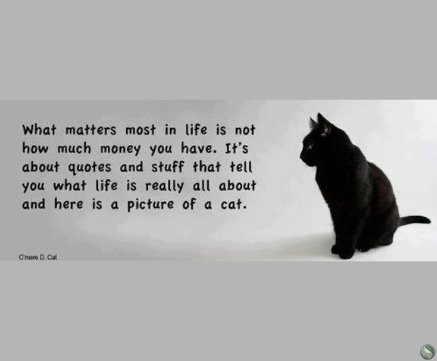 Matters Of The Heart Quotes Quotesgram: What Matters In Life Quotes. QuotesGram