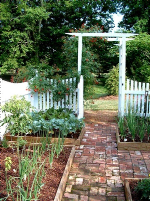 Gardens raised beds and picket fences on pinterest for Kitchen garden fence
